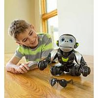 Interactive Monkey Robot